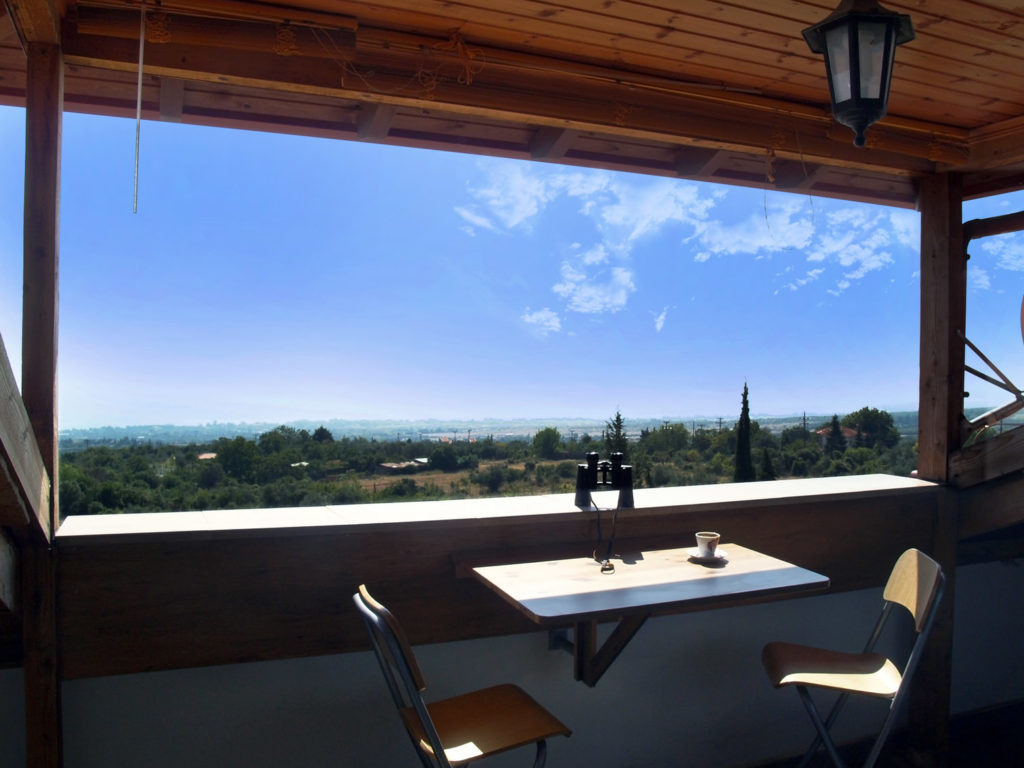 View from the veranda