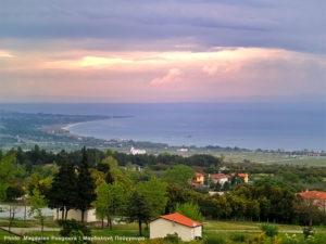 Morning view from the veranda